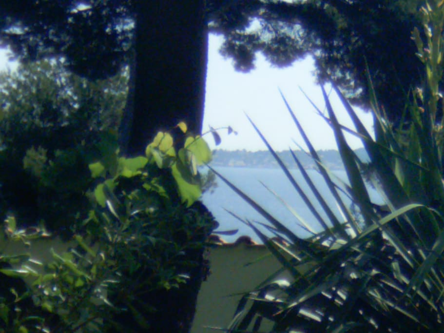 Seaview from House