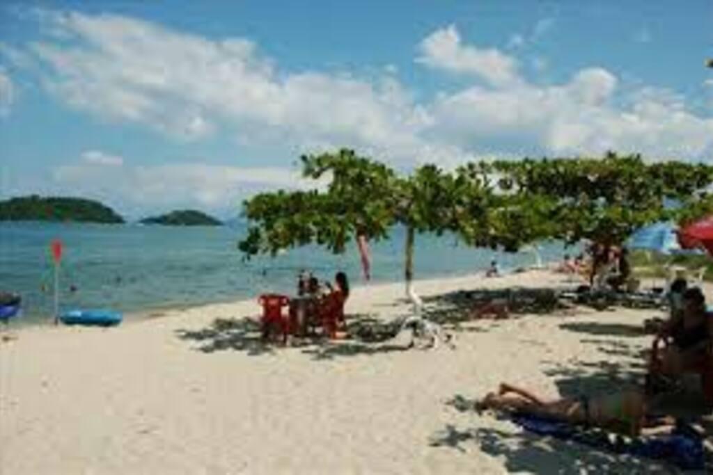 Praia calma com sombras naturais para acomodação.