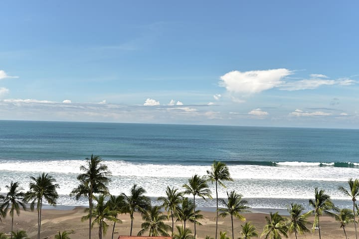 *TROPICAL GARDEN APARTMENT* Steps From The Beach!!