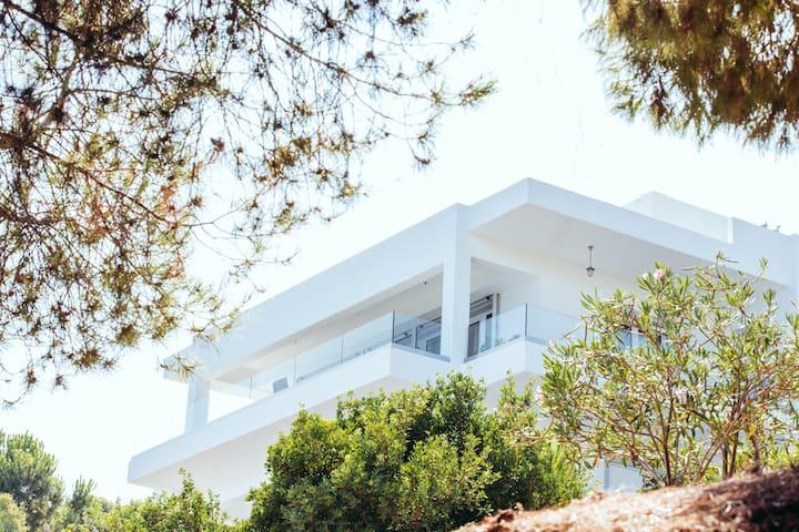 Daskalio Sea Front House
