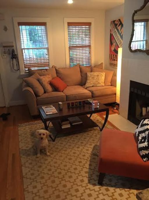 Living room (goldendoodle not included!)