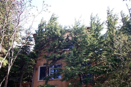 Alaska Cannabis friendly Tree House - Anchorage