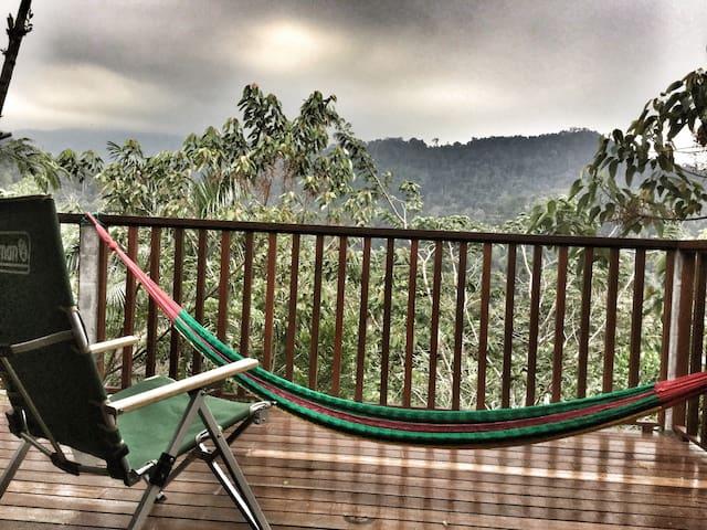 Selepas Hujan: Pondok Petai Madu