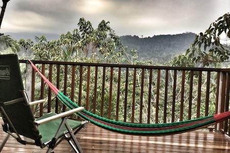 Selepas Hujan: Pondok Petai Madu - Pantai - Chalet
