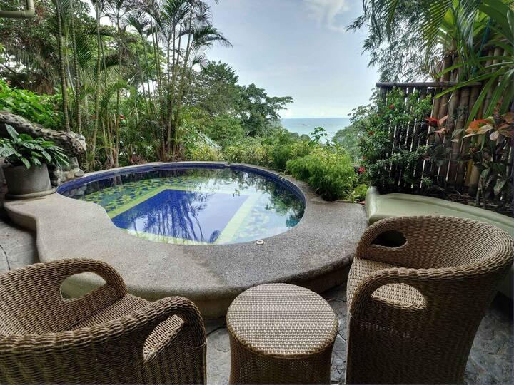 Luxury Jungle Living 3 Suites 3 Pools Ocean Views