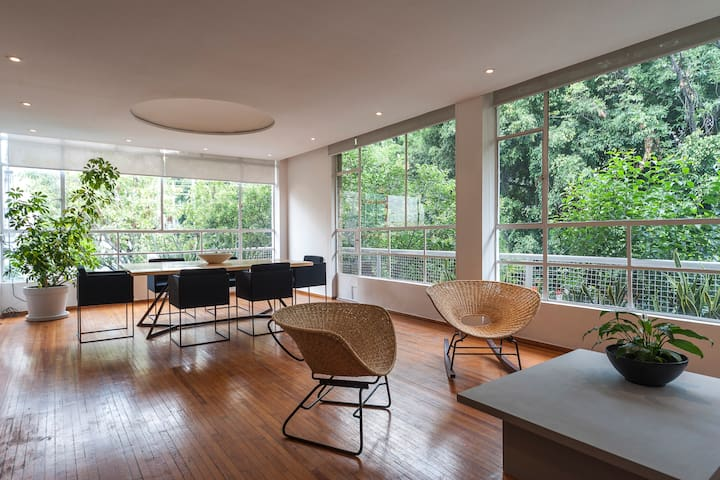 Sunny spacious apartment in the heart of Condesa