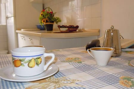 Large, cozy flat 2min from the sea - Procchio - Flat