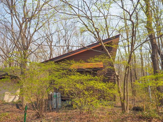 Goto参加施設。木々に囲まれた隠れ家キャビン。ハイランドパーク至近。カップルに最適。