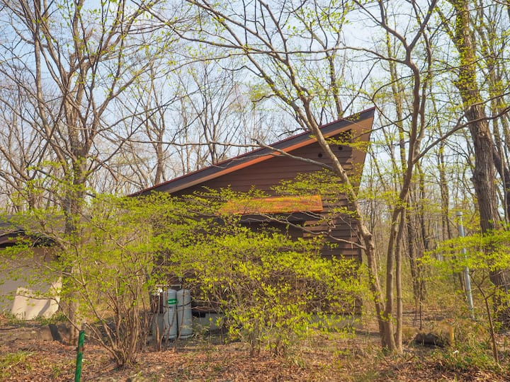 木々に囲まれた隠れ家キャビン。ハイランドパーク至近。カップルに最適。