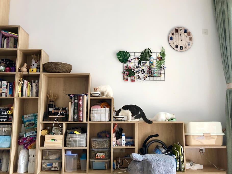 大厅书架也是喵的阶梯。书架上有好多很棒的设计书都是特地从北京广州上海搜刮回来的,有兴趣的小伙伴们可以自己泡壶花茶,随意翻看~