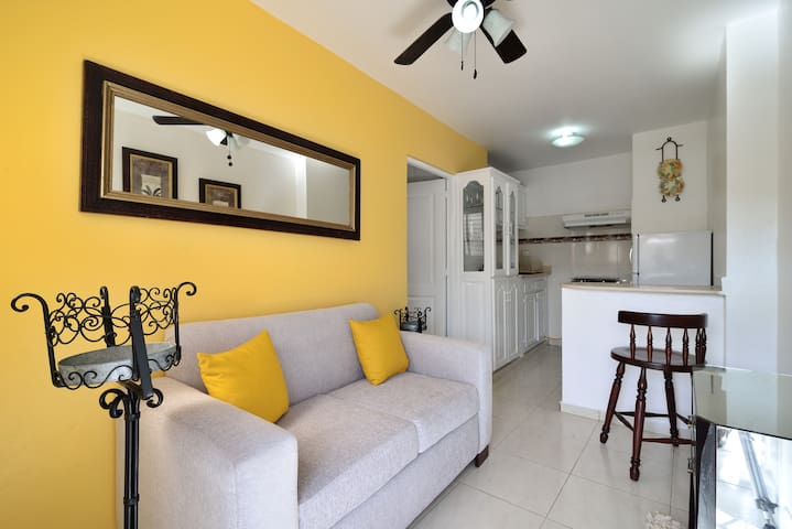 Cozy 1 Bedroom Apt W/ WIFI & Cable - Santiago De Los Caballeros