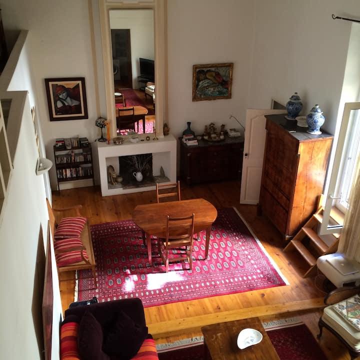 Au coeur d'Aix logement avec terrasse et mezzanine