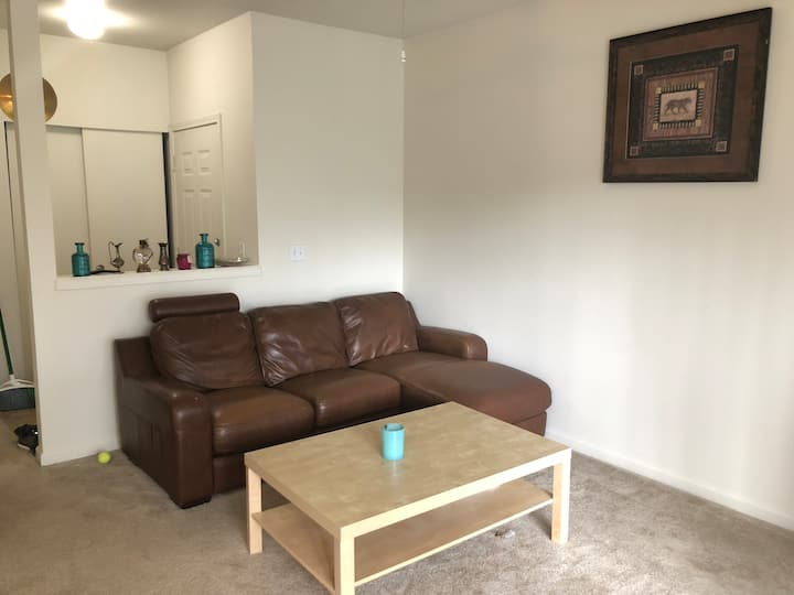 1BR/1Bath apartment near Costco and lake smammish