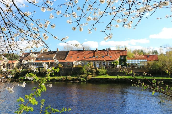 Historic cottage beside river Tees - Barnard Castle - Ev