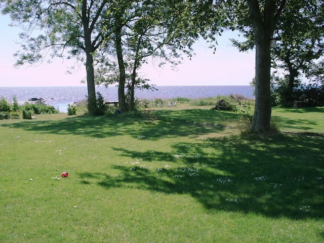 Stranden Abbekås. (App.Mossby) - Abbekås - Pis