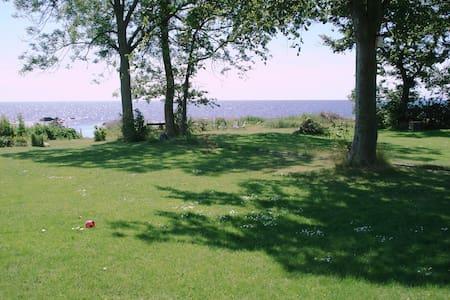 Stranden Abbekås. (App.Mossby)