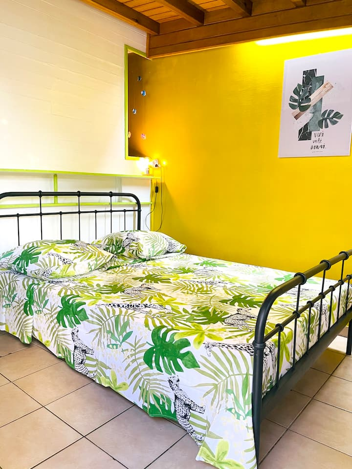 Studio in Basse Terre, with enclosed garden and WiFi - 12 km from the beach