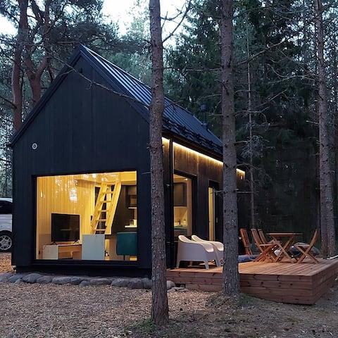 Krkse Lahe Modern Cabin