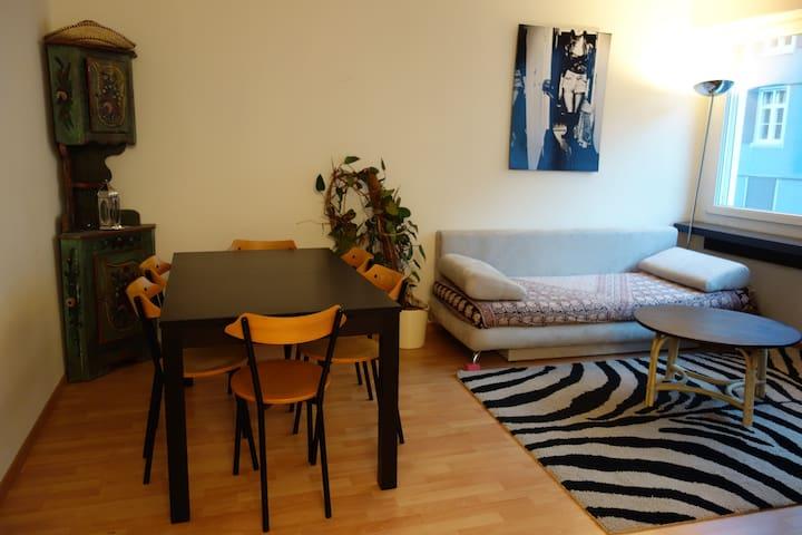 Charming Studio near Train Station - Bazel - Appartement