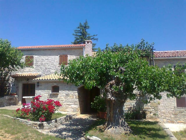Authentic Stonebuilt Istrian house - Zrenj - Casa