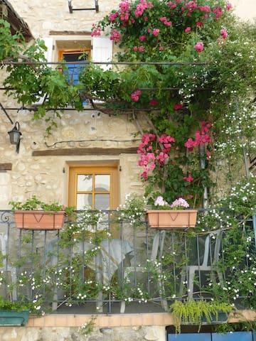 La treille à le Chaffaut Alpes de Haute  Provence - Mezel - Wohnung