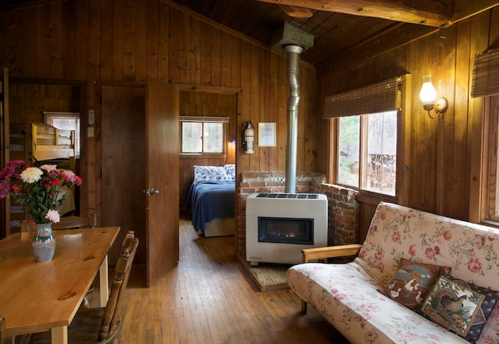 #4 Loblolly Pet Friendly, Mnt Cabin, Hiking