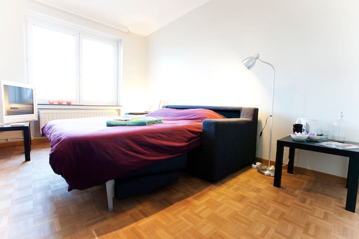 Affordable room in lively Ixelles
