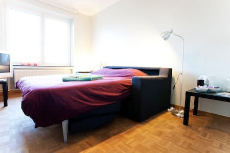 Affordable room in lively Ixelles - Bruxelles