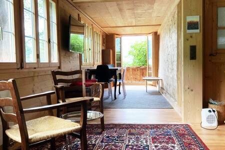 Studio mit wunderschönem Ausblick aufs Saanenland