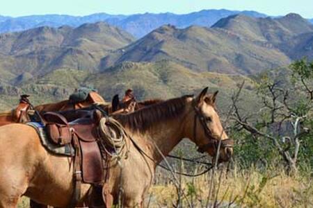 Rancho Los Banos Adventure Ranch - Bed & Breakfast