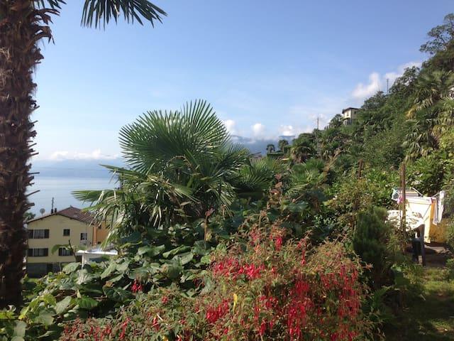 Kleine Sonnenstube mit Seeblick - Brissago - Apartamento