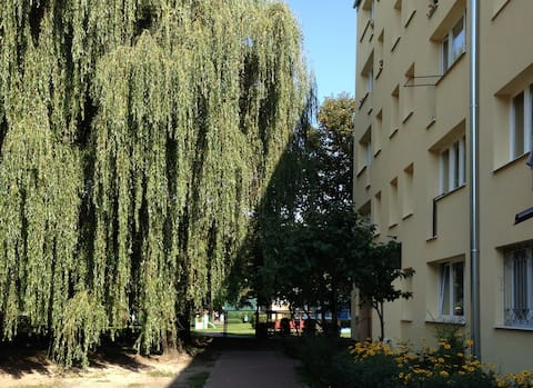 Top Wohnung in Pruszków