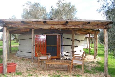 Relax in Yurta - Canino