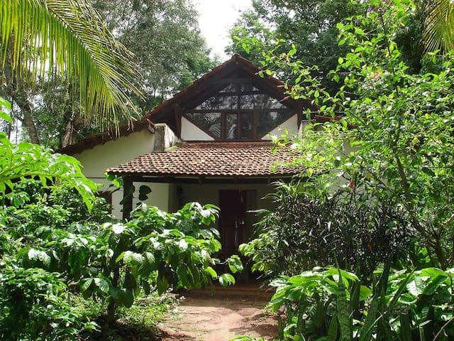 The Last Resort - Homestay in Coorg - Kushalnagar - Bed & Breakfast