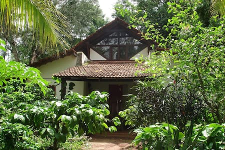 The Last Resort - Homestay in Coorg - Szoba reggelivel