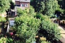 Vue sur notre jardin
