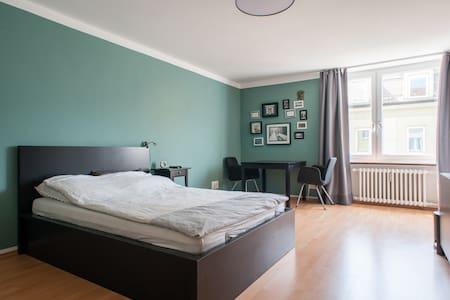 1 BR Apartment Centre/University - Мюнхен - Квартира