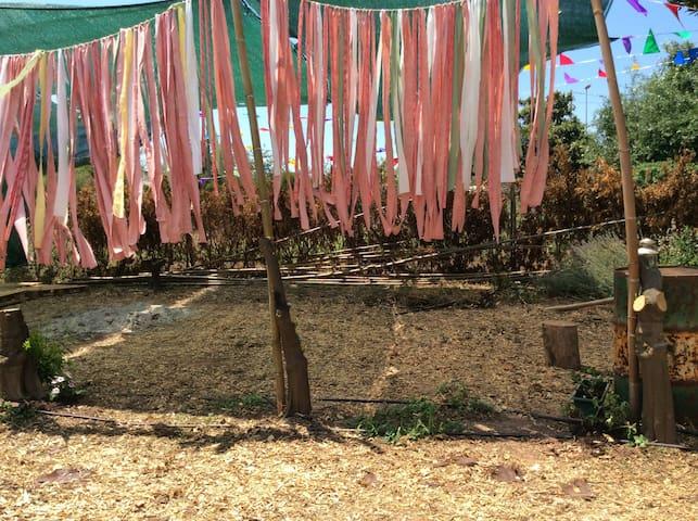 Camp in My garden / Acampa en mi jardín 10€ person