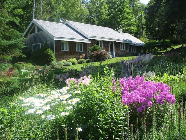 Relaxing waterfront cottage - Mundleville - Cabin