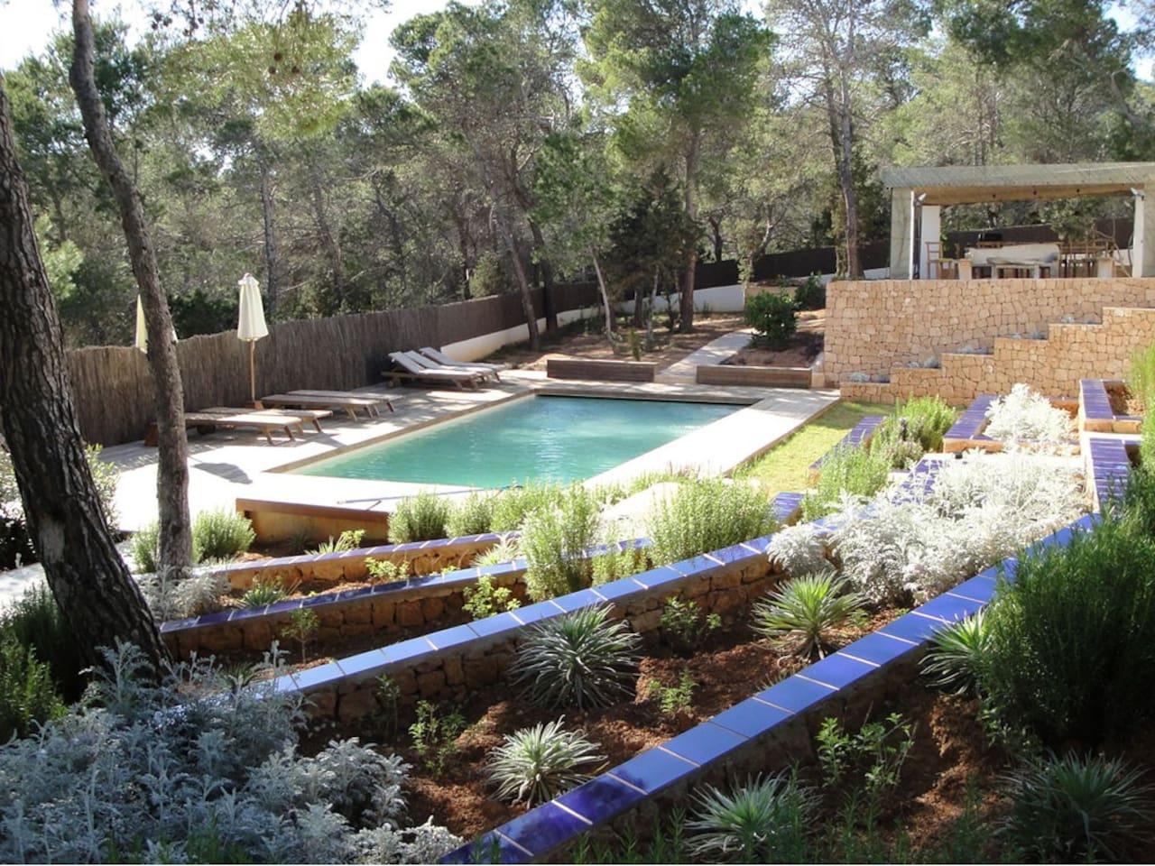 la piscine et le jardin...