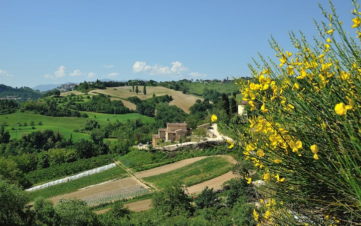 COUNTRY HOUSE CA' VERNACCIA B&B CA1/CA2
