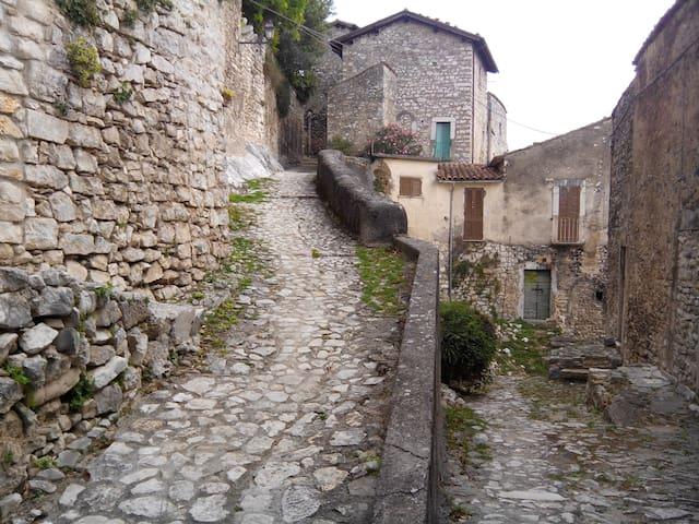 Via Menotti