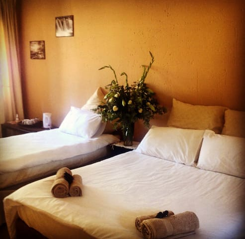 In and Out Guest Lodge - Benoni - Bed & Breakfast