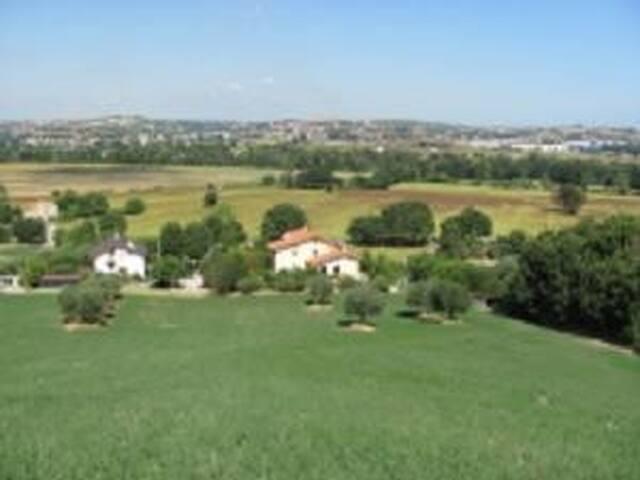 VILLA MIMOSA, TRA MARE E CAMPAGNA - Senigallia - Villa
