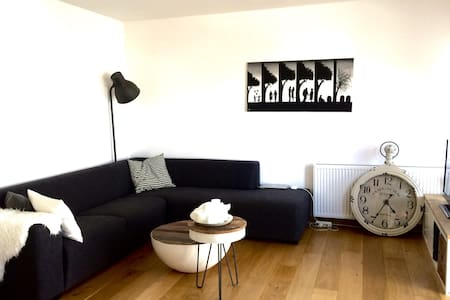 A cozy house near amsterdam - Krommenie - Appartement