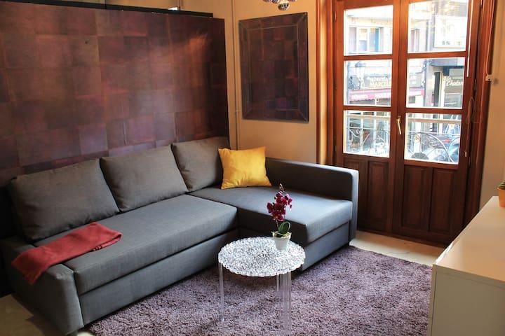 Bonito piso apto. en pleno centro - Oviedo - Casa
