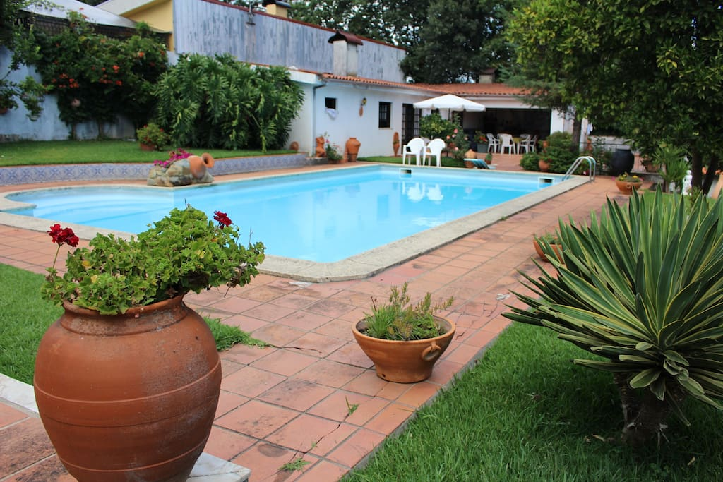 Shared pool between the main house and the guests
