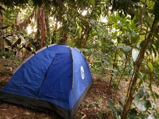 The Bivouac of Solitude (Camping Ground, Kandy)