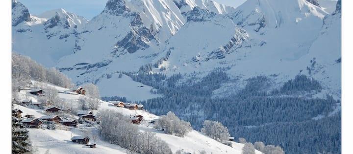 Appartement 8 personnes à 100 m des pistes de ski