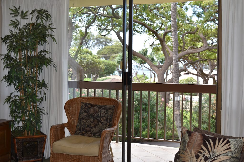 cozy chair looking at peek a boo view of ocean !